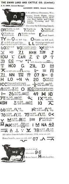 Cattle earmark codes and shapes | Inspiration - Cultural