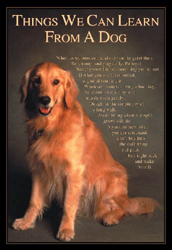 mini poster - Things We Can Learn From A Dog - Mighty Minds