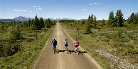 Tour cycling | Explore Norway by bike