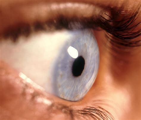 Side View Of A Woman's Healthy Blue Eye Photograph by